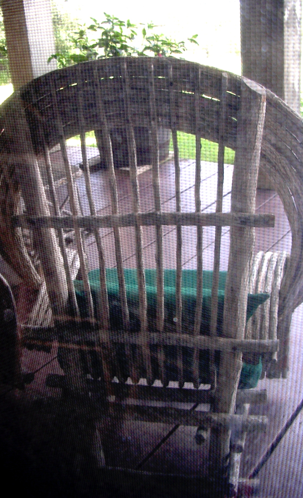 dscn2745-patio-chair-thru-screen.jpg